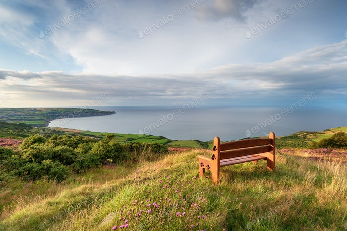 A wooden bench facing out to sea above Ravenscar on the Yorkshir