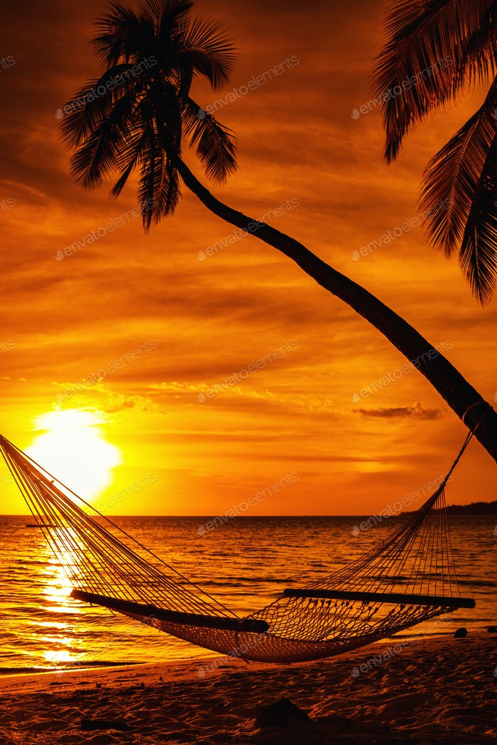 Hammock on a palm tree during beautiful sunset on tropical Fiji