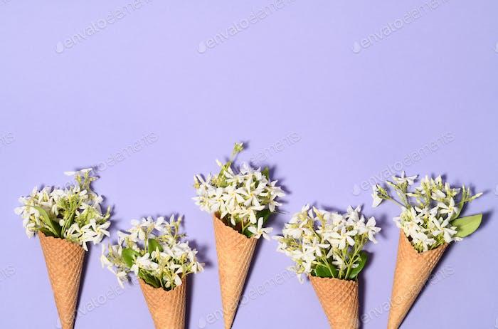 Ice cream cones with jasmine flowers