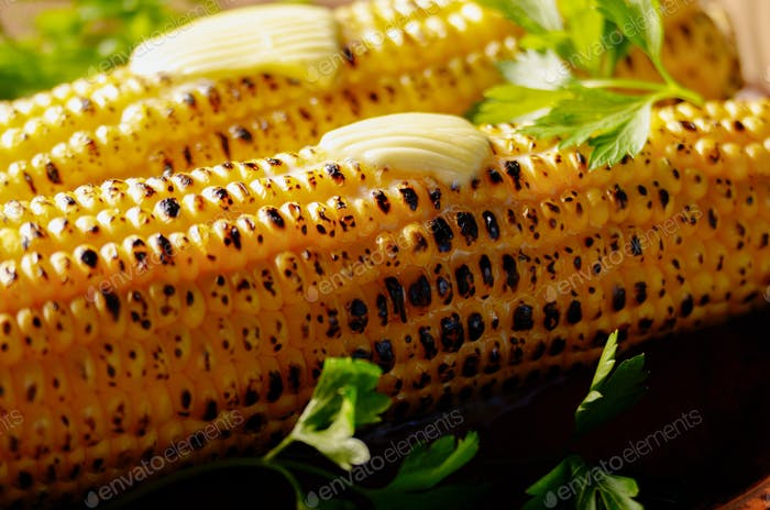 Grilled sweet corn cob with melting butter and greens on clay di