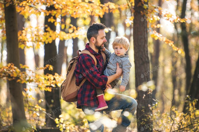 A mature father with a toddler son on a walk in an autumn forest.