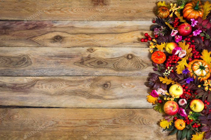 Thanksgiving greeting with pumpkins and pink flowers, copy space