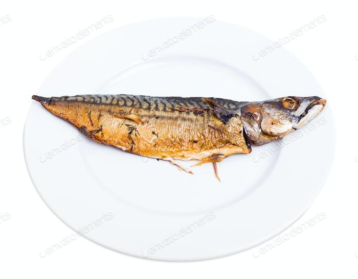 Delicious roasted mackerel fish.