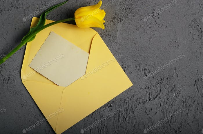 Yellow tulip near blank greeting card and envelope on grey backg