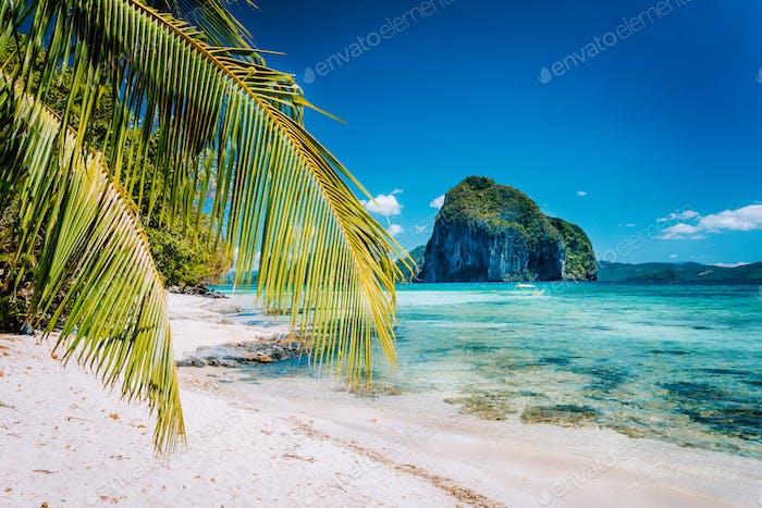 Palm tree branches on sandy beach with impressive Pinagbuyutan island in background. Dreamlike