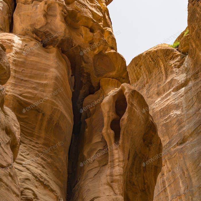 Canyon in Petra, Jordan