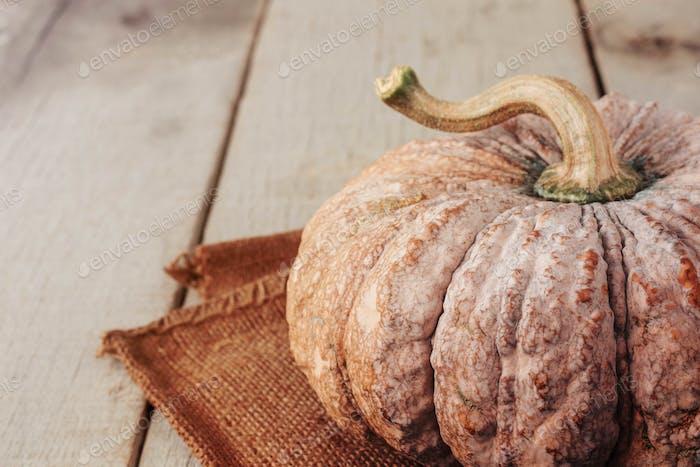 Pumpkin on wood table