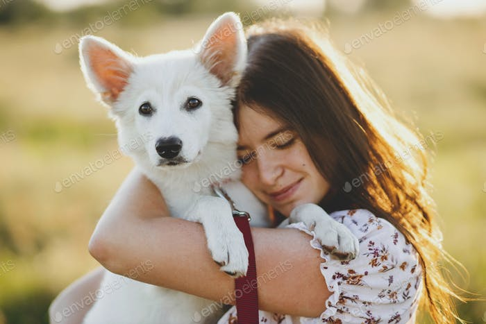 Woman hugging cute white puppy in warm sunset light in summer meadow