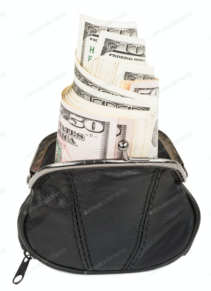 Purse with the money
