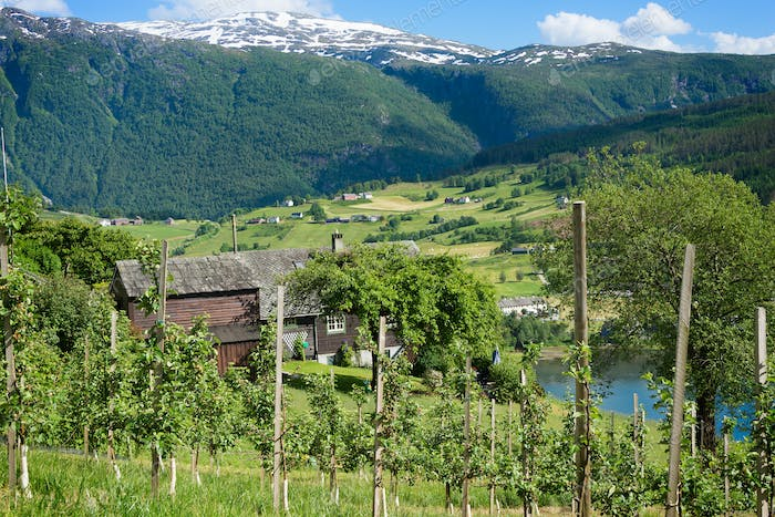 Hardangerfjord in Norwegian countryside in spring