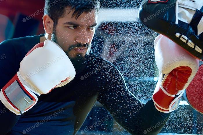 Focused boxer punching pads