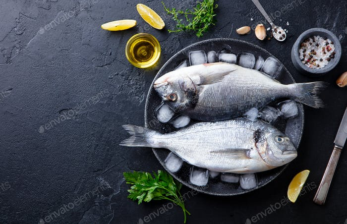 Dorado Raw Fish on a Plate with Ice and Lemon. Black Slate Background. Copy Space. Top view.