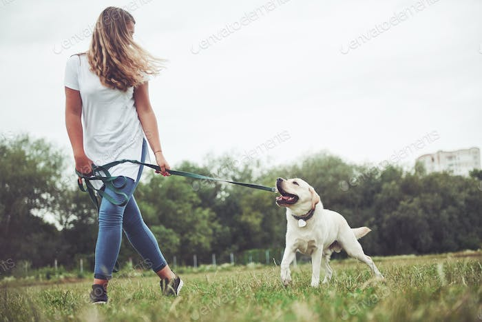 A young smiling girl with a happy happy expression plays with her beloved dog