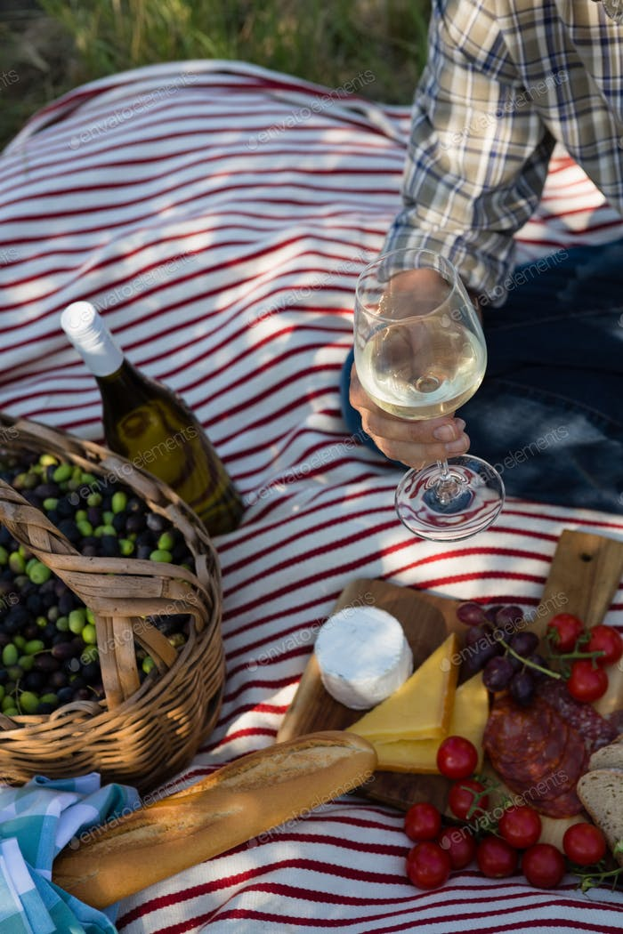 Mid-section of man sitting with a glass of wine on picnic blanket