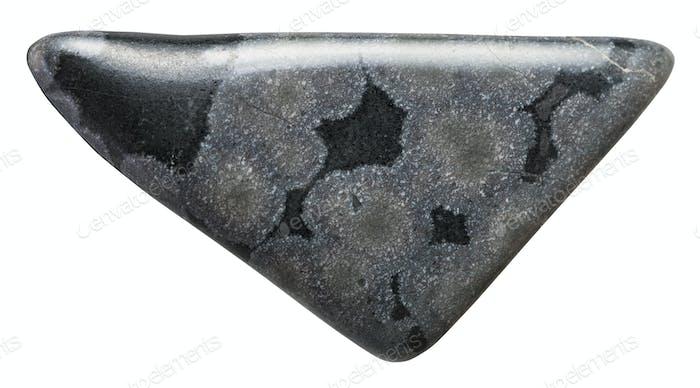 Variolith Mineralstein auf weiß isoliert