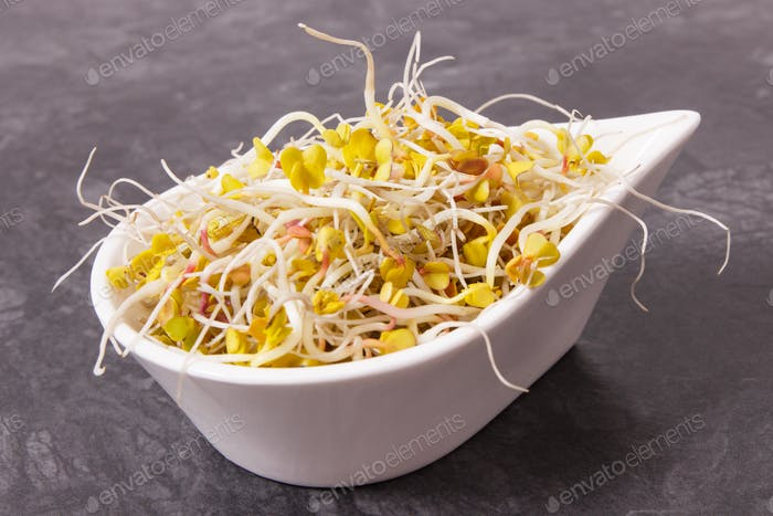 Radish sprouts in bowl, healthy nutrition concept