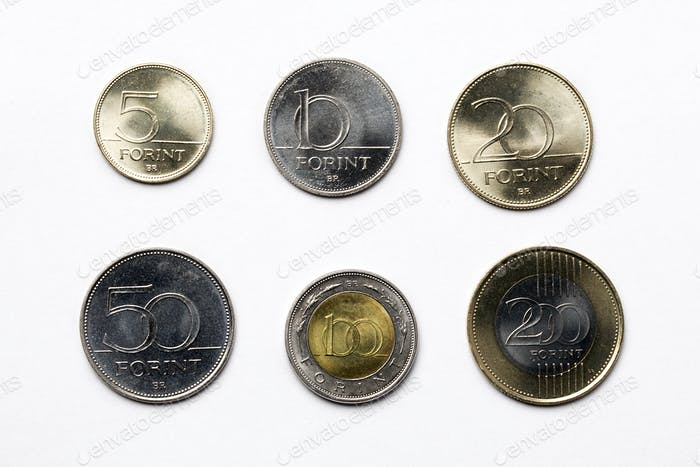 Hungarian coins on a white background