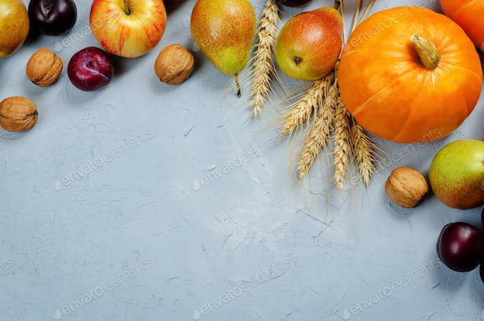 Autumn vegetable and fruit grey background