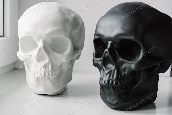 White and black skulls stand on the windowsill