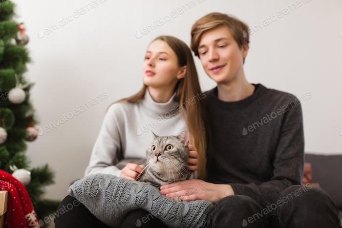 Junges Paar sitzt auf dem Sofa mit schöner Katze auf Kissen zu Hause und Weihnachtsbaum in der Nähe