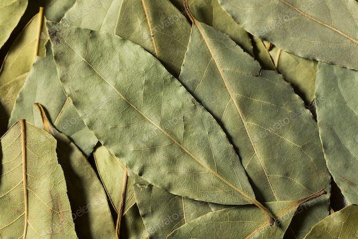 Healthy Organic Raw Bay Leaves