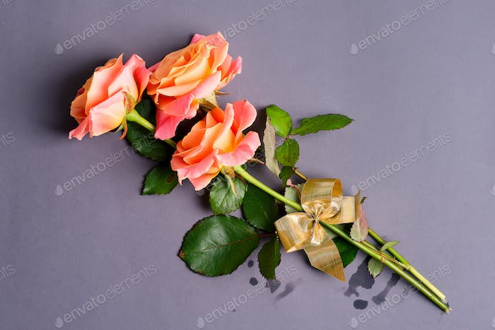Isolated orange roses bouquet on a gray papear background