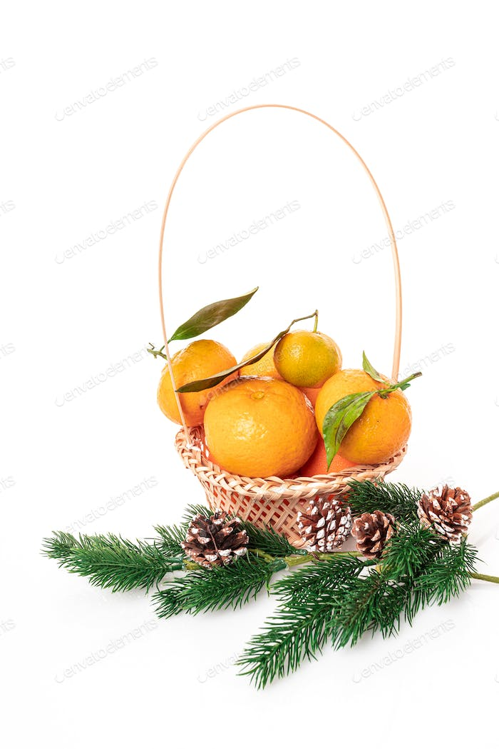 Christmas Tangerines. tangerines on a white background