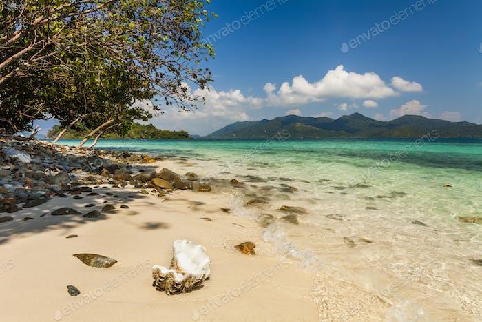 Am Ufer einer tropischen Insel. Koh Chang. Thailand