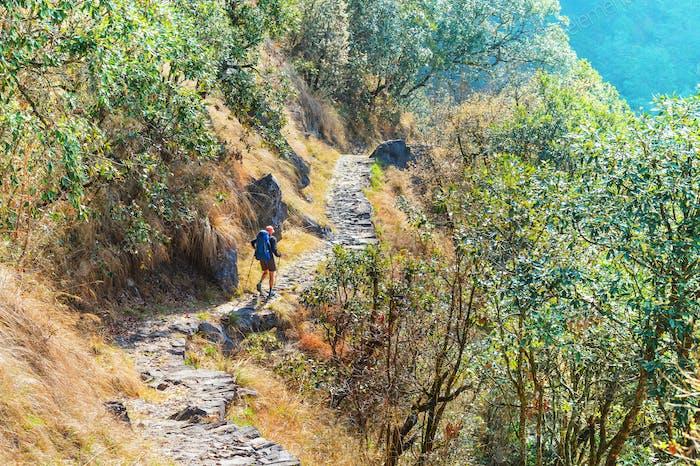 Caminata en la selva de Nepal