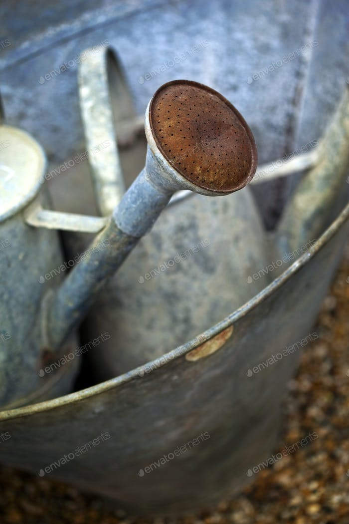 Watering can and basin