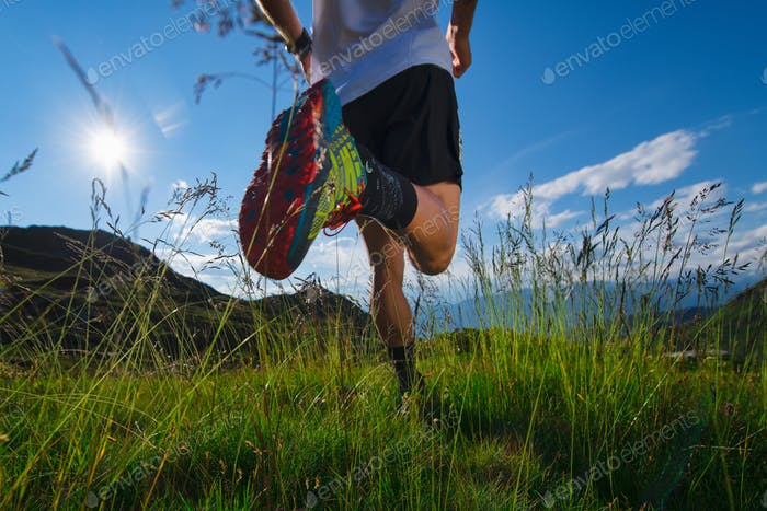 Run in the mountains in the meadow with sun and beautiful nature