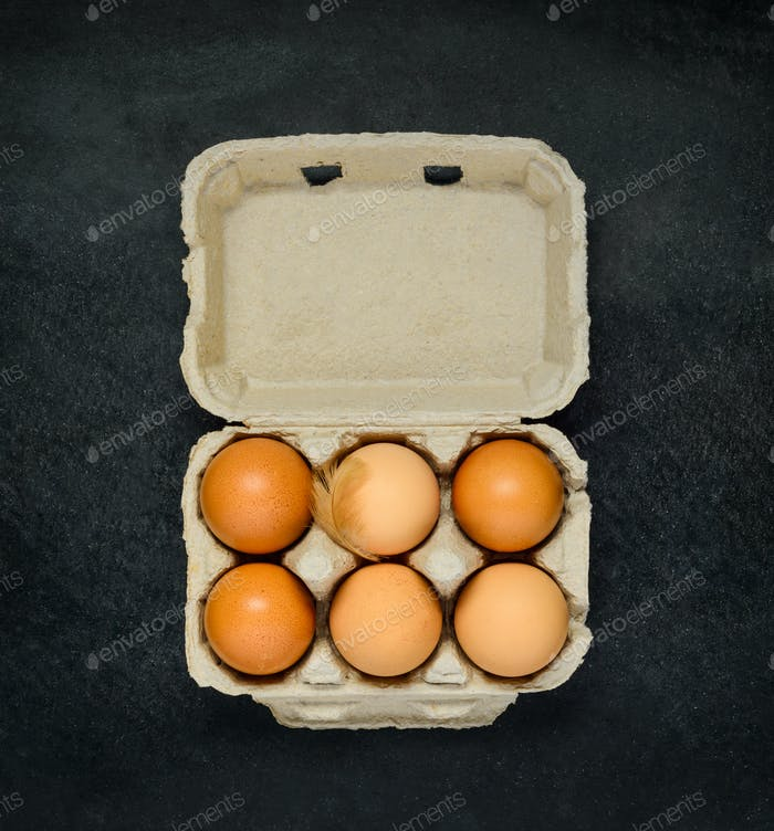 Egg Carton with Organic Eggs