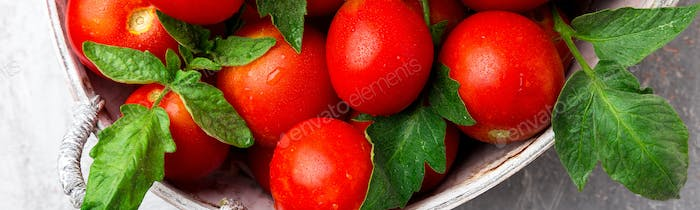 Banner of Red tomato in grey basket on grey background.