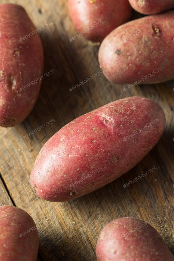 Raw Organic Red Fingerling Potatoes