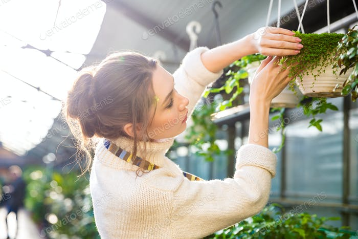 Tender female gardener working with plants and flowers