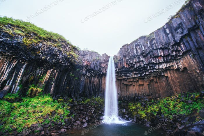 Great view of Svartifoss waterfall. Dramatic and picturesque scene. Popular tourist attraction