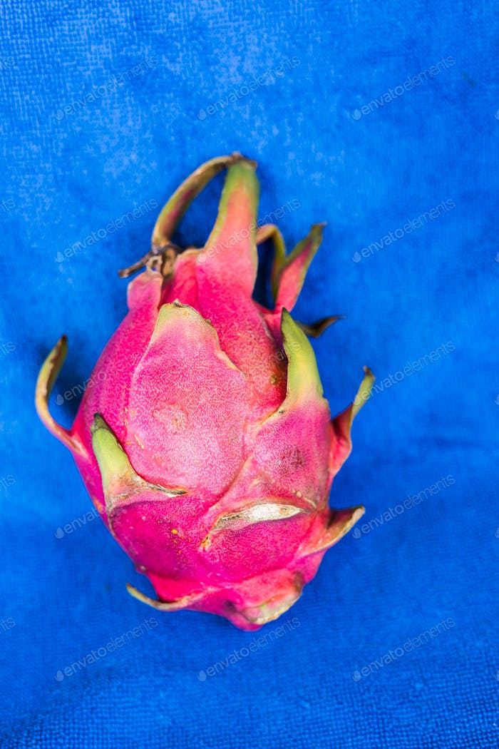 dragon fruit on a blue background