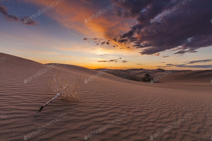 Beautiful views of the Gobi desert. Mongolia