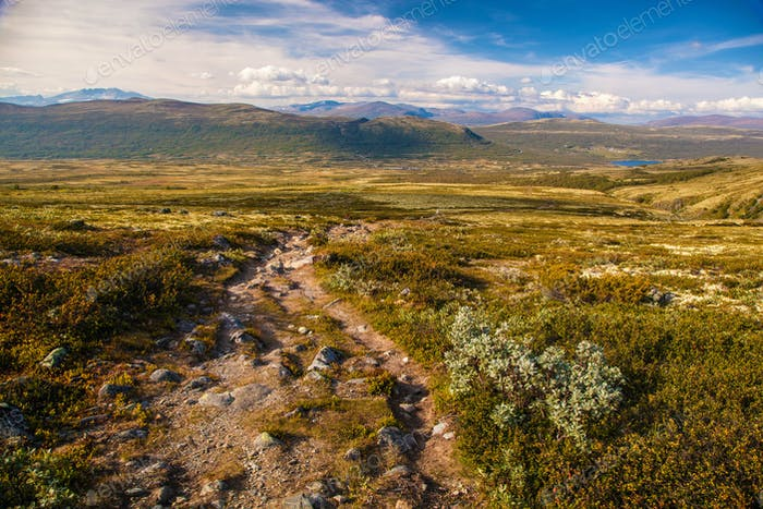 mountain landscape Norway national park Dovre