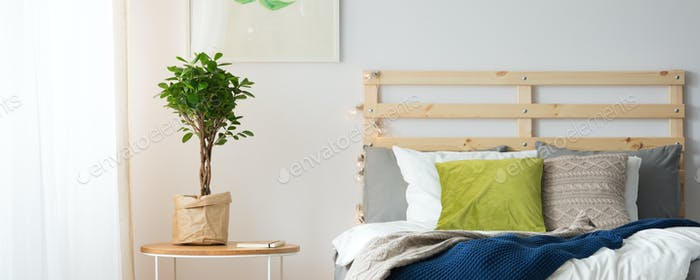 Colorful decor of bedroom