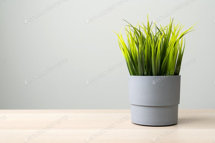 Isolated artificial potted bush on wooden table