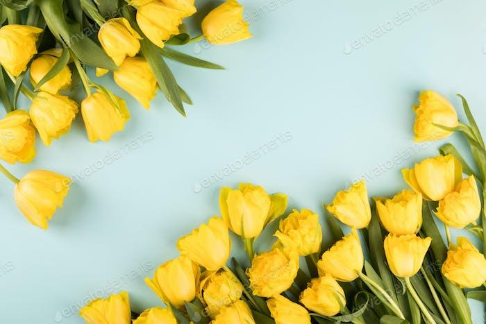 Gelbe Tulpen Blumen .Symbol des Frühlings.Muttertag, Geburtstag, Valentinstag.