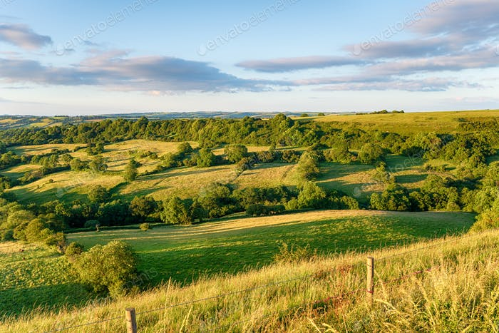 Farmland in the Dorset countryside