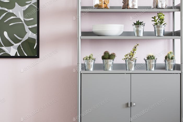 Rack with flower pots