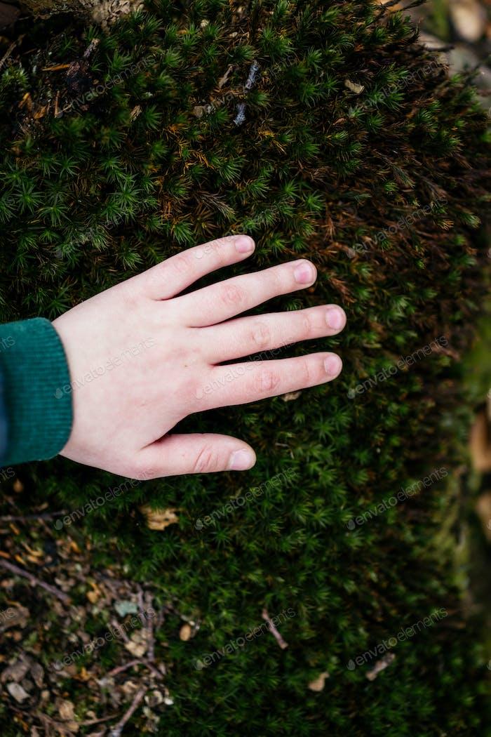 Touching green