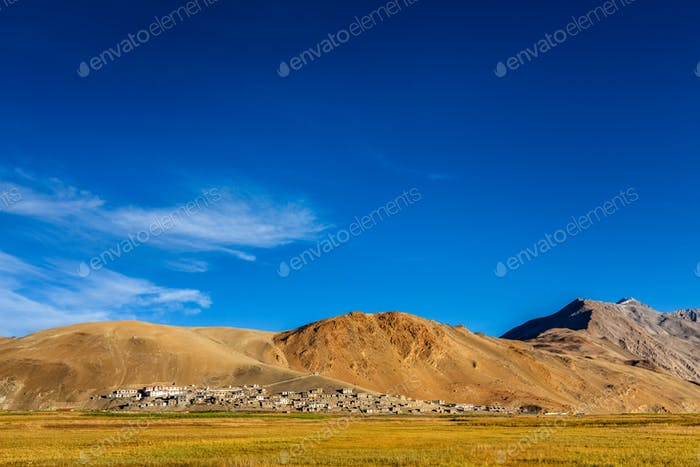 North Indian traditional Korzok village on Tso Moriri, Ladakh. 4500 meters above sea
