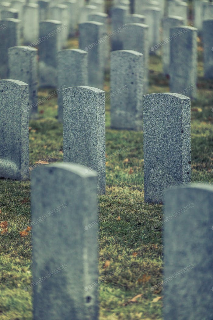 Thumbnail for Back of Army Headstone and Graveyard Cemetery during a Sad Day o