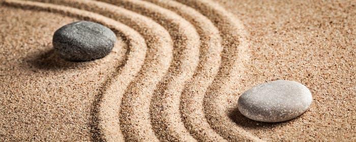 Thumbnail for Japanese Zen stone garden