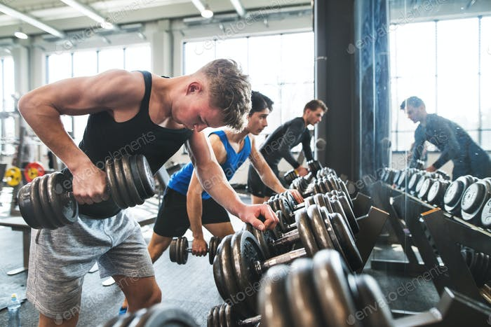 Young fit men in gym exercising with dumbbells.