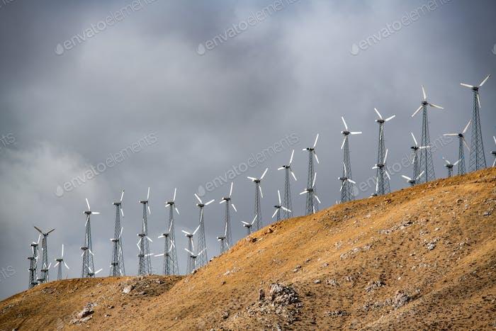 Molinos de viento para la producción de energía eléctrica, California, EE.UU.